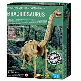 Image of 4M brachiosaurus-skelet