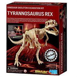 Image of 4M tyrannosaurus rex-skelet