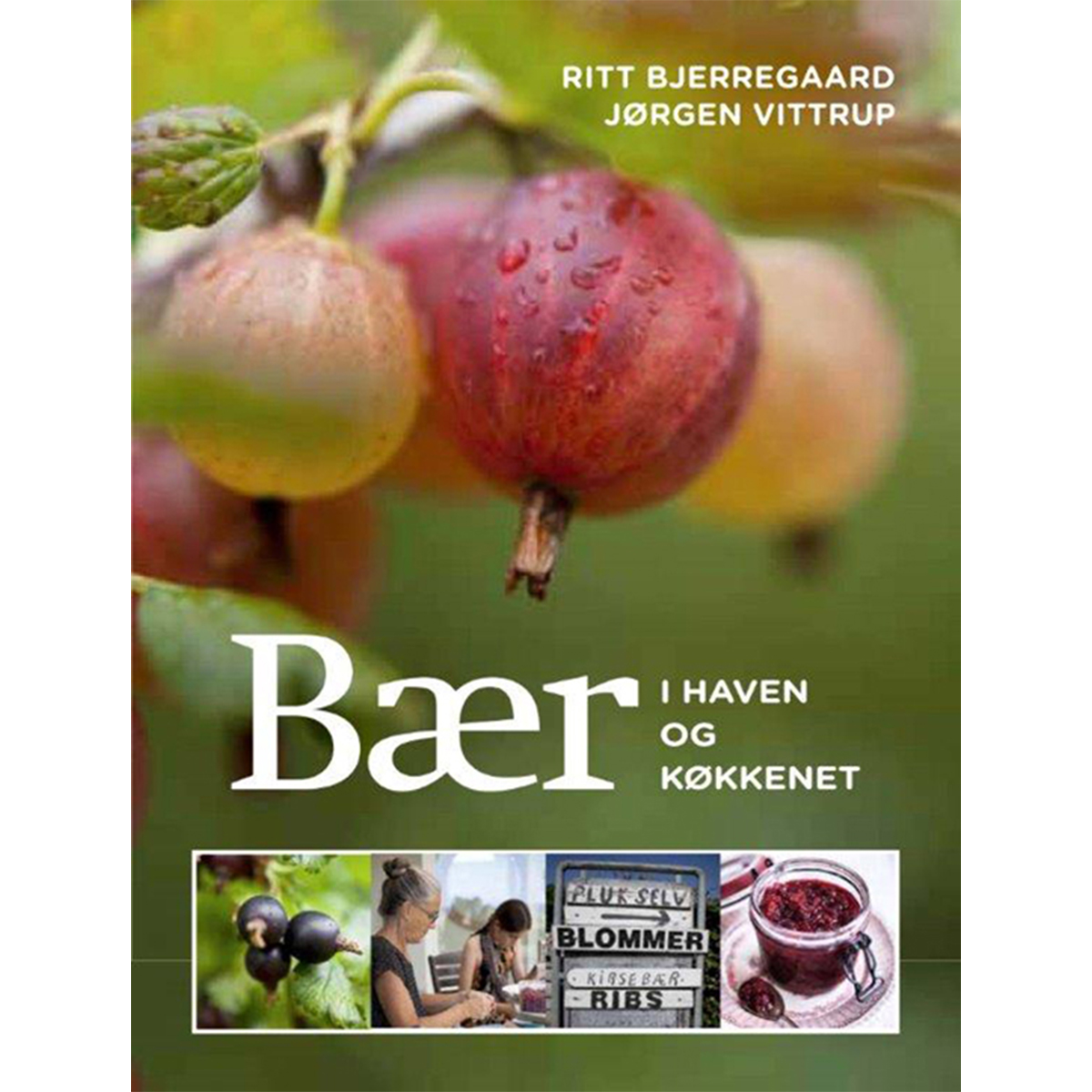 Billede af Bær i haven og køkkenet - Indbundet