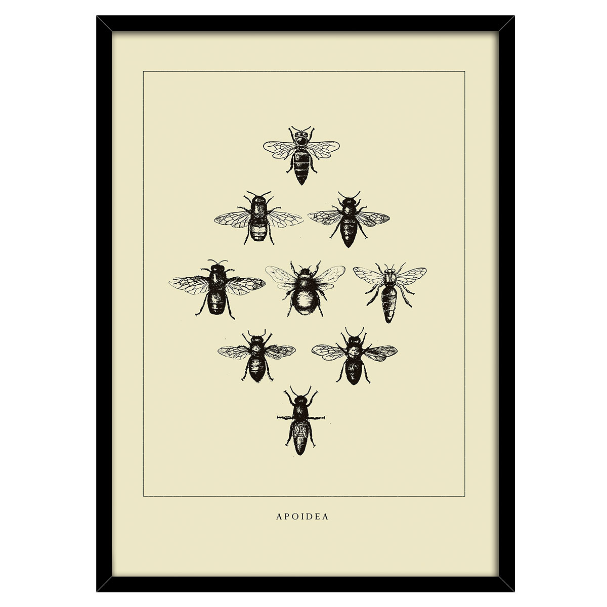 Image of   Bees Yellow plakat i ramme