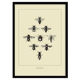 Image of   Bees Yellow plakat i ramme