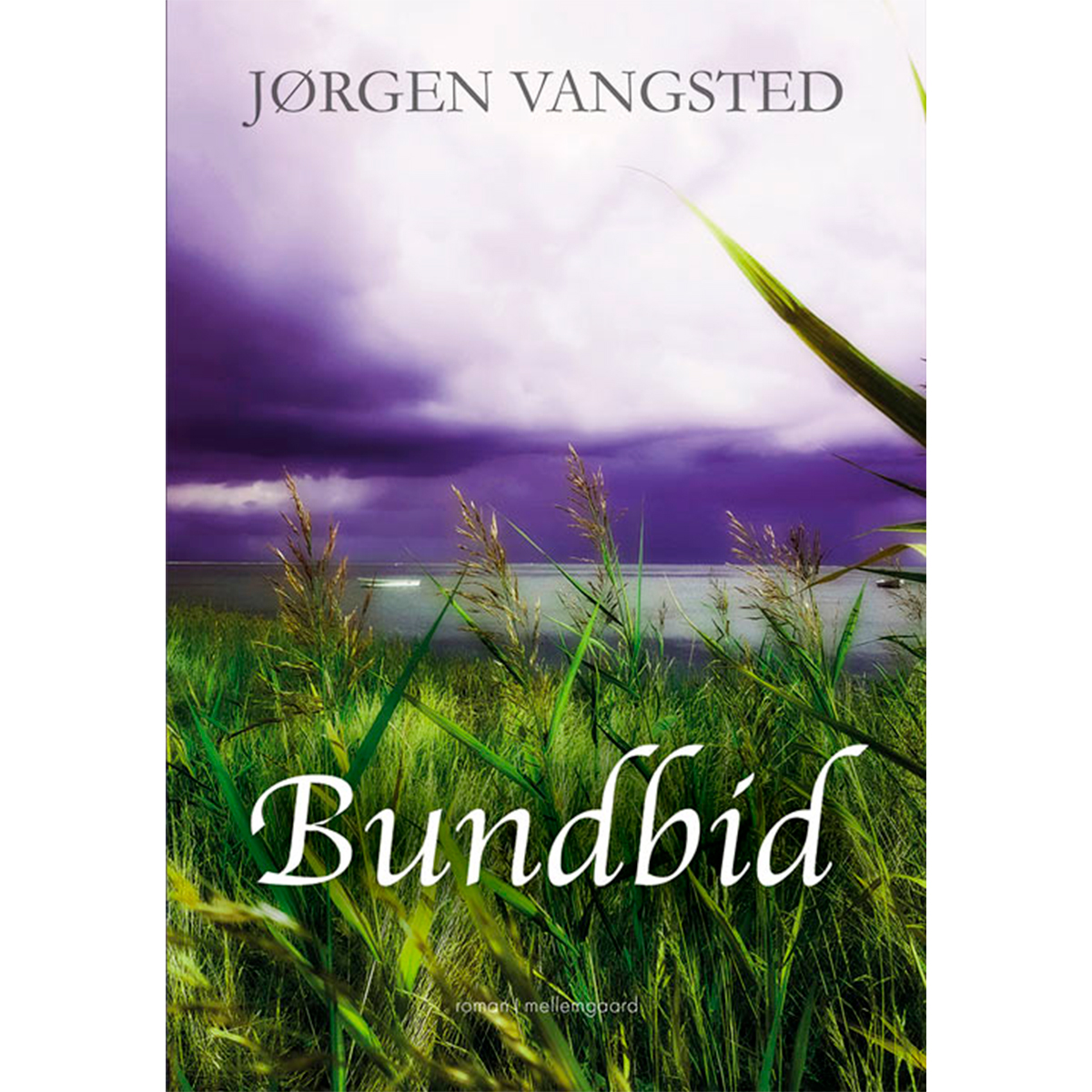 Image of   Bundbid - Hæftet