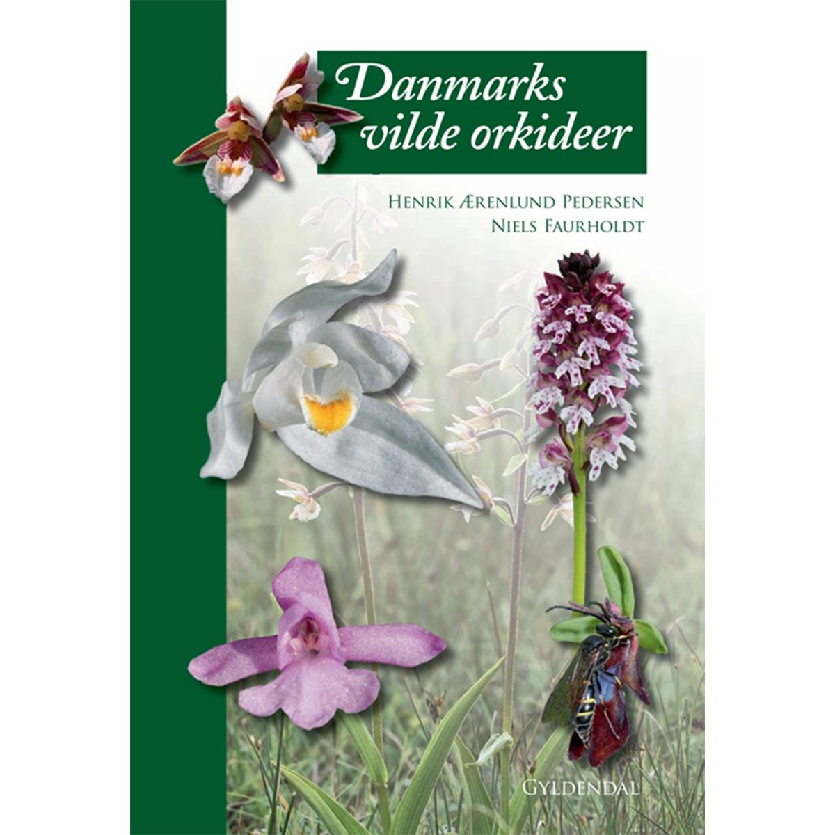 Image of   Danmarks vilde orkideer - Indbundet