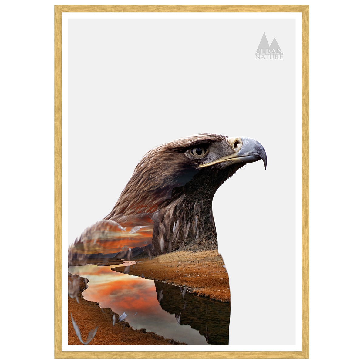 Image of   Eagle plakat i ramme - Clean Nature