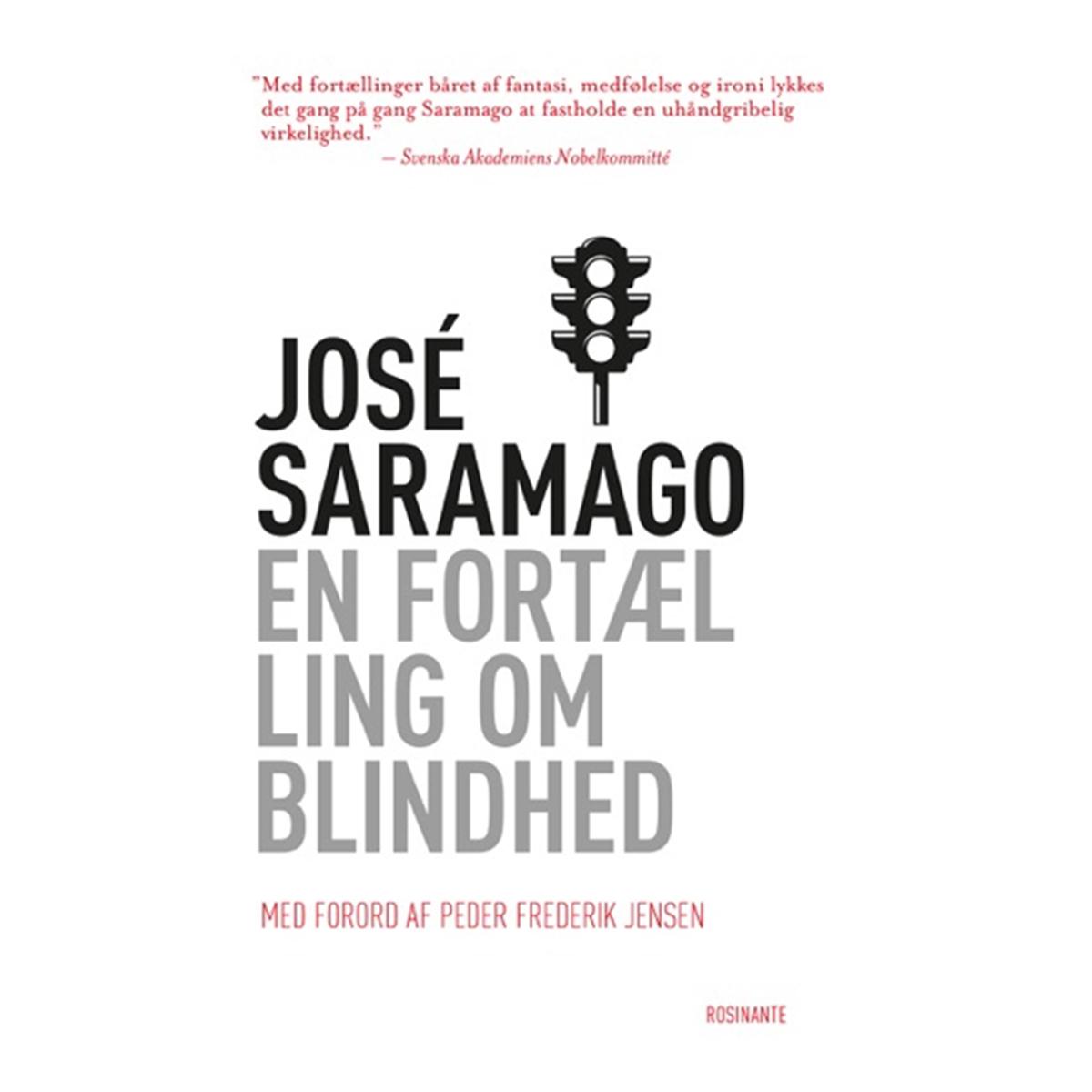 Image of   En fortælling om blindhed - Hæftet