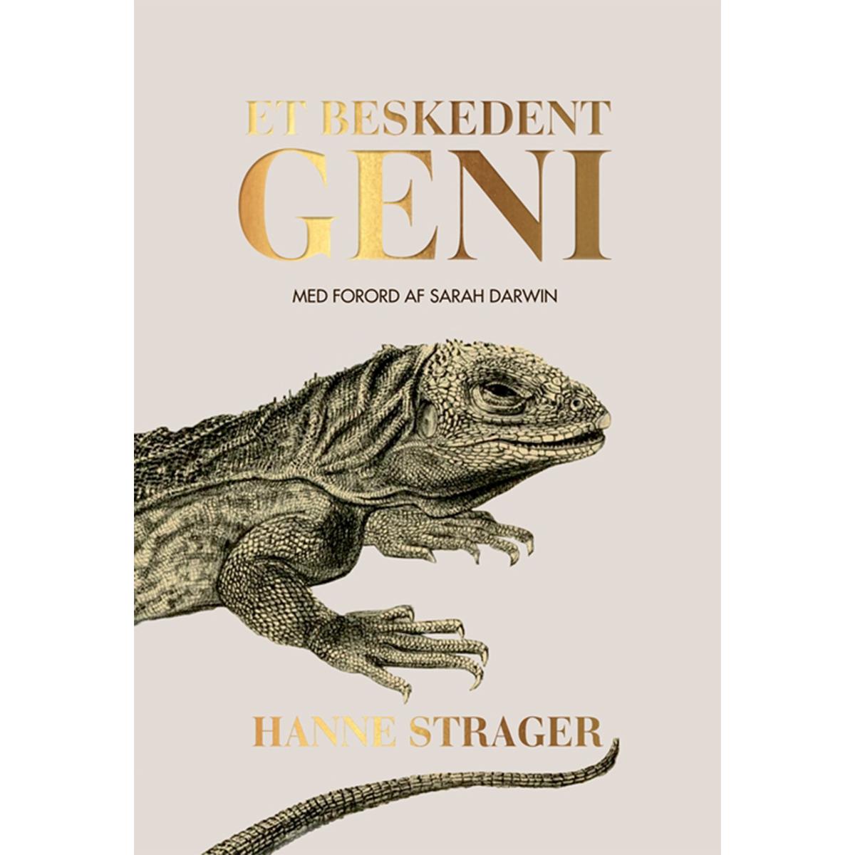 Image of   Et beskedent geni - Indbundet