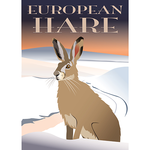 European Hare plakat - Ping Pong Posters H 70 x B 50 cm