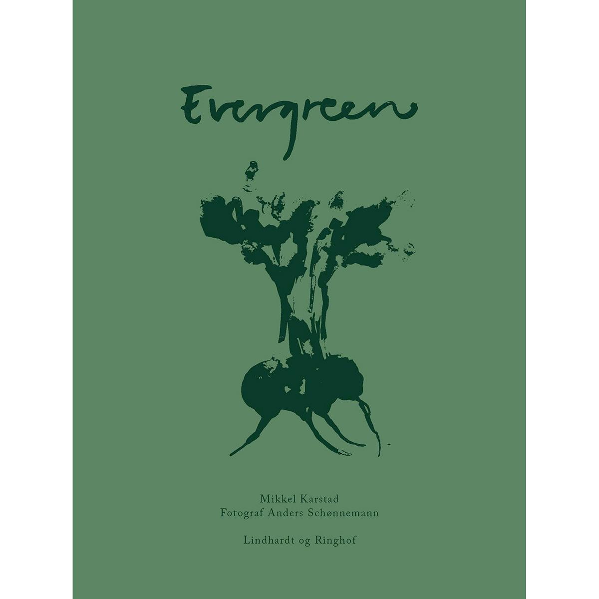 Image of   Evergreen - Hardback