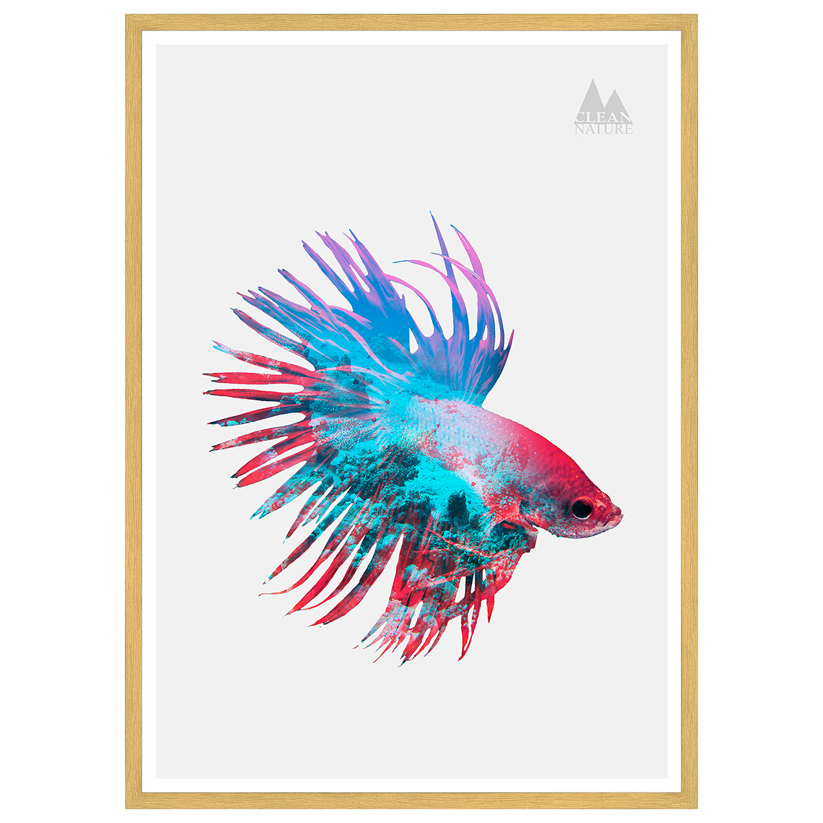 Image of   Fighting Fish plakat i ramme - Clean Nature