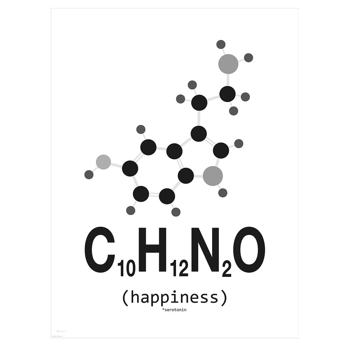 Image of   Happiness plakat - Molekylen.dk