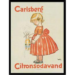 Image of   Hoei Denmark - Citron Sodavand - Indrammet