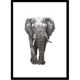 Image of   Hoei Denmark - Elefant - Indrammet