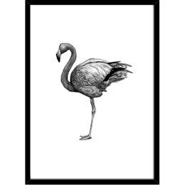 Image of   Hoei Denmark - Flamingo - Indrammet