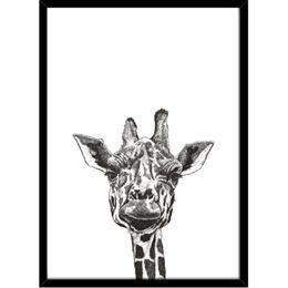 Image of   Hoei Denmark - Giraf - Indrammet