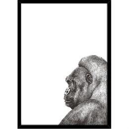 Image of   Hoei Denmark - Gorilla - Indrammet