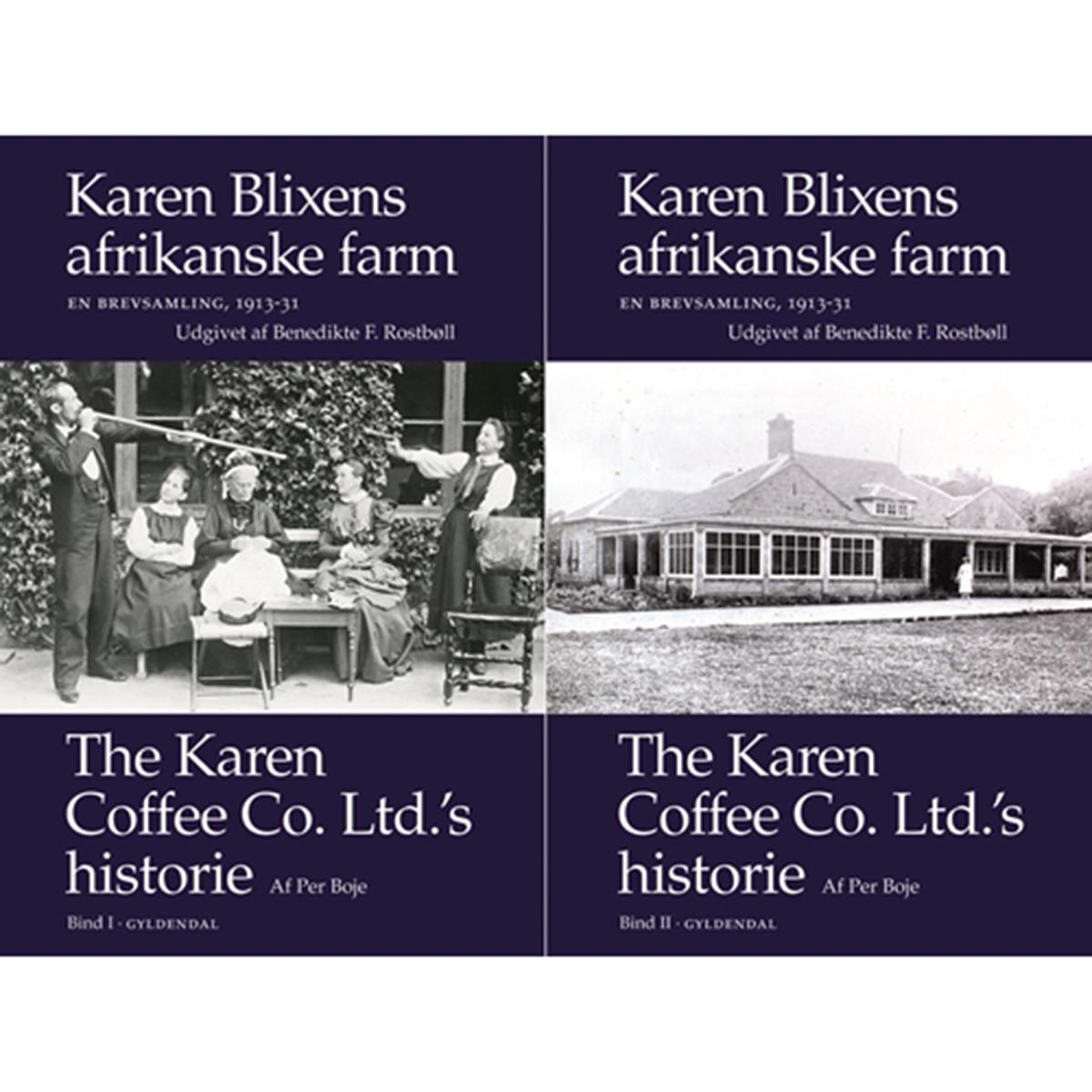 Image of   Karen Blixens afrikanske farm - En brevsamling 1913-31 - Indbundet