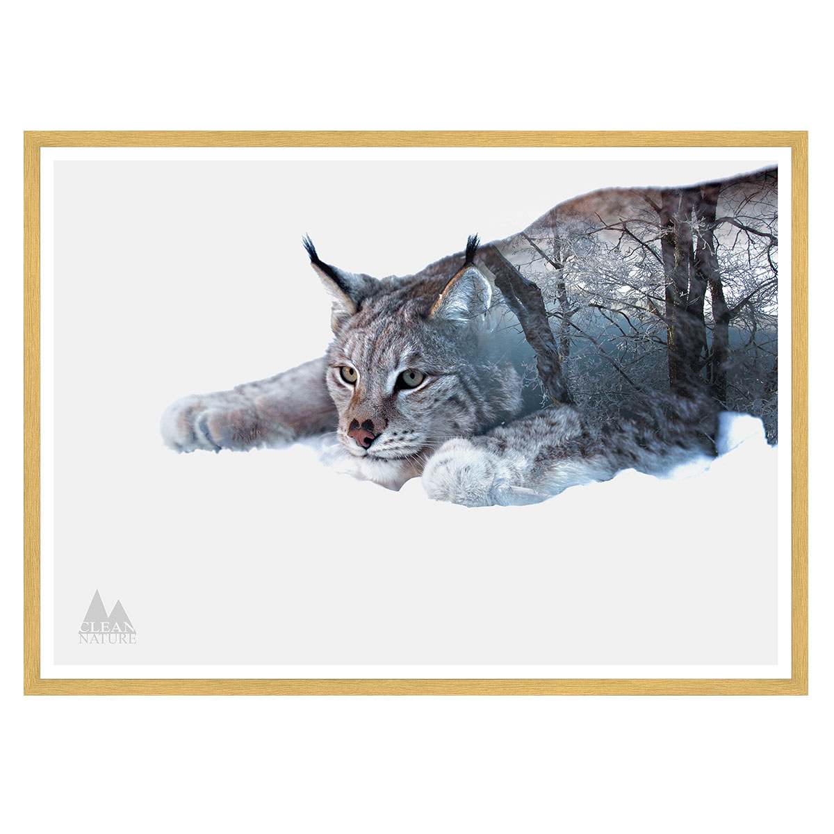 Image of   Lynx plakat i ramme - Clean Nature