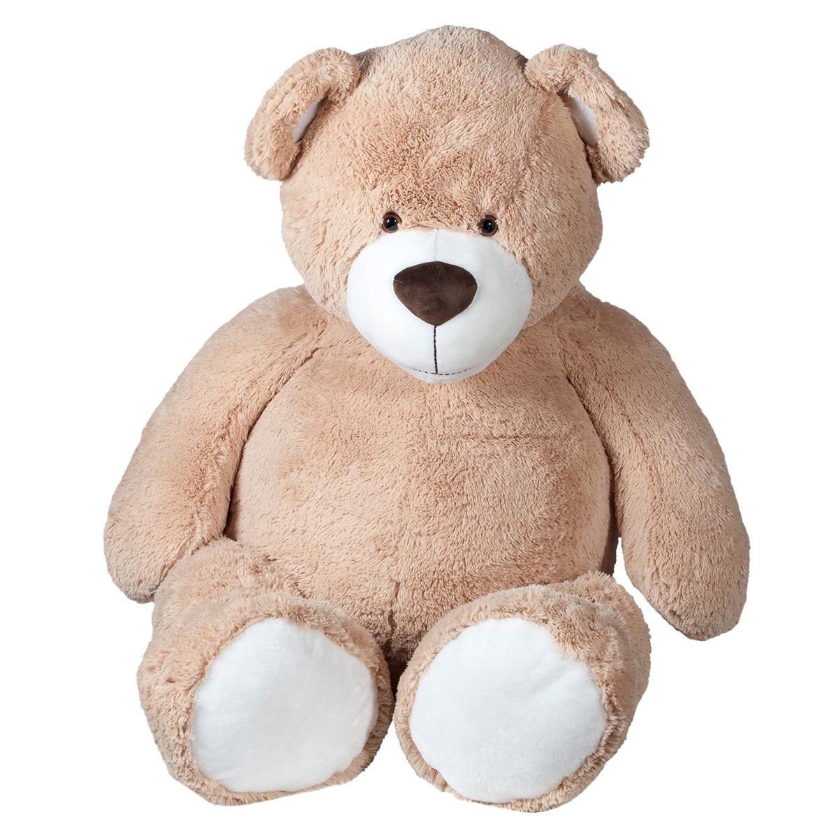 Molli kæmpebamse - Bjørn