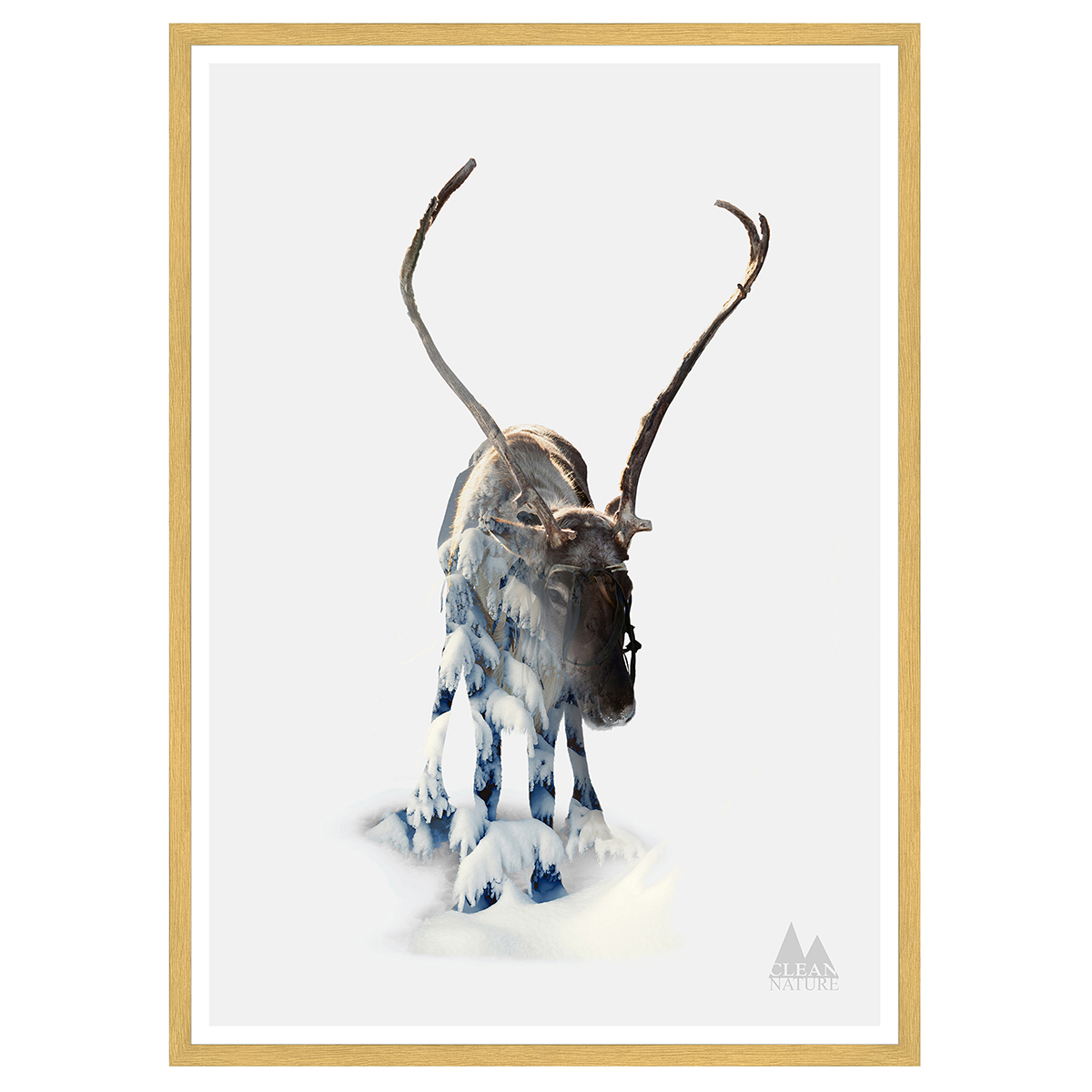 Image of   Moose plakat i ramme - Clean Nature