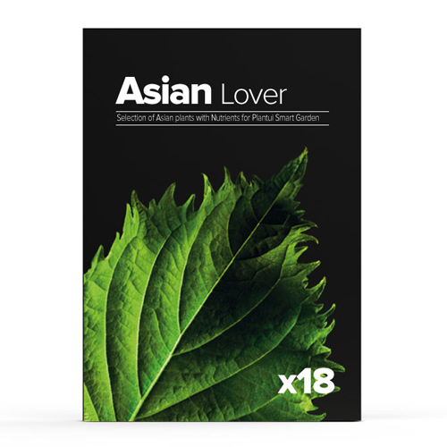 Image of   Plantui Asian Lover