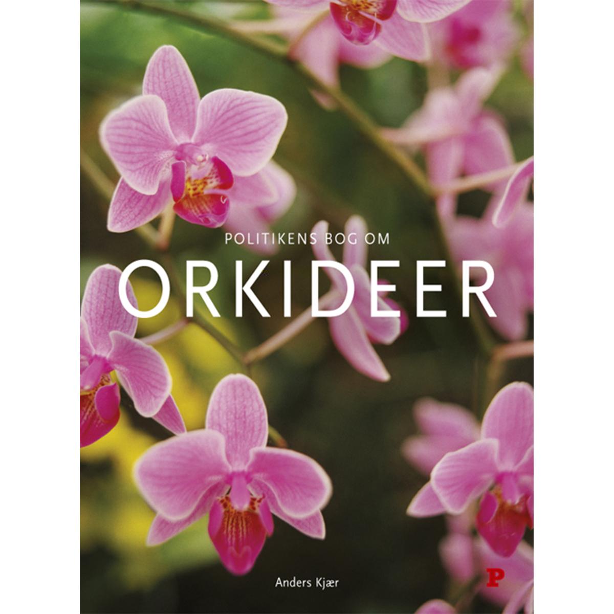 Billede af Politikens bog om orkideer - Indbundet