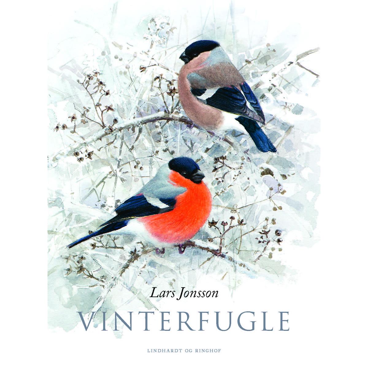 Billede af Vinterfugle - Indbundet