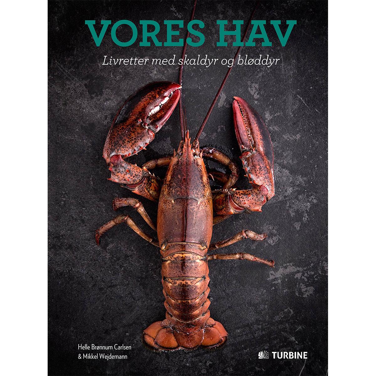 Image of   Vores hav - Livrettet med skaldyr og bløddyr - Hardback